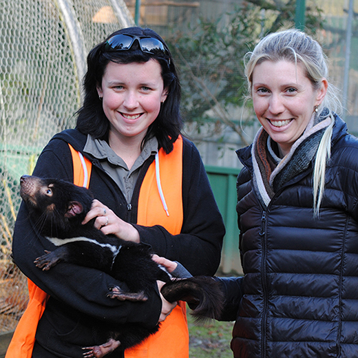USC researcher Sarah Wynwood, right, with Tasmanian devil handler Dimity Mansfield at Wings Wildlife Park, Gunns Plains, Tasmania.