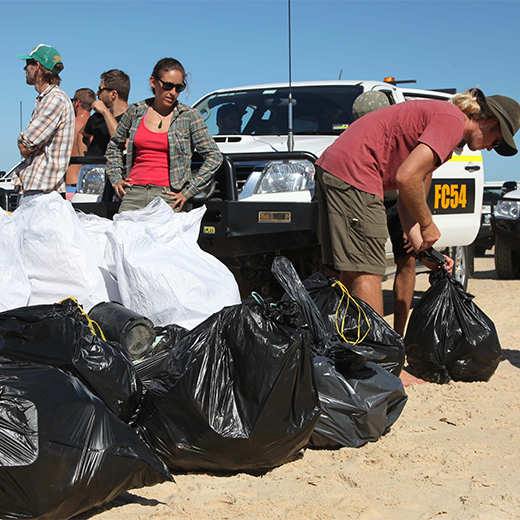 USC students clean up rubbish on Fraser Island